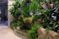 водопад в зимнем саду 2