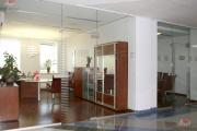 цельностеклянные перегородки в офисе фото7
